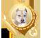 Medalla pitbull