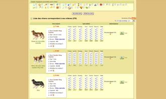 Dogzer - Comprar un perro en una subasta y otras interacciones